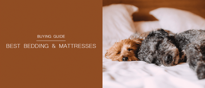 Best Bedding and Mattress Reviews for the Soundest Sleep of Your Life
