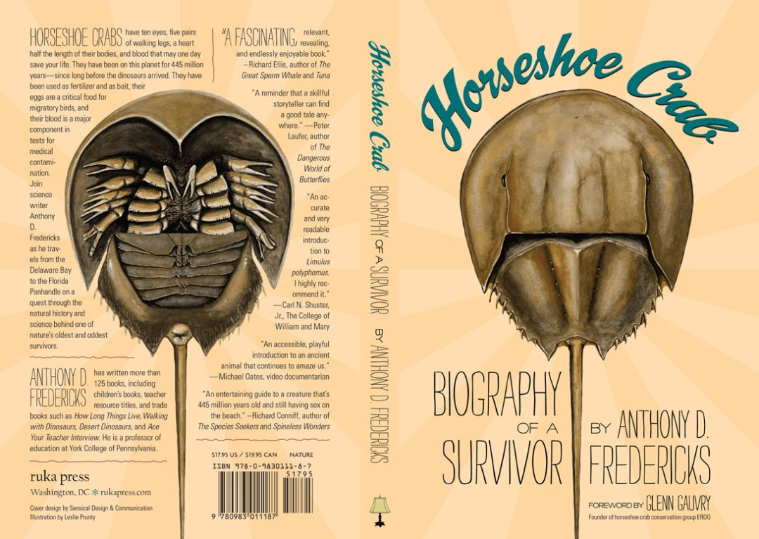 Flat cover with spine and back cover, dorsal and ventral views of horseshoe crab
