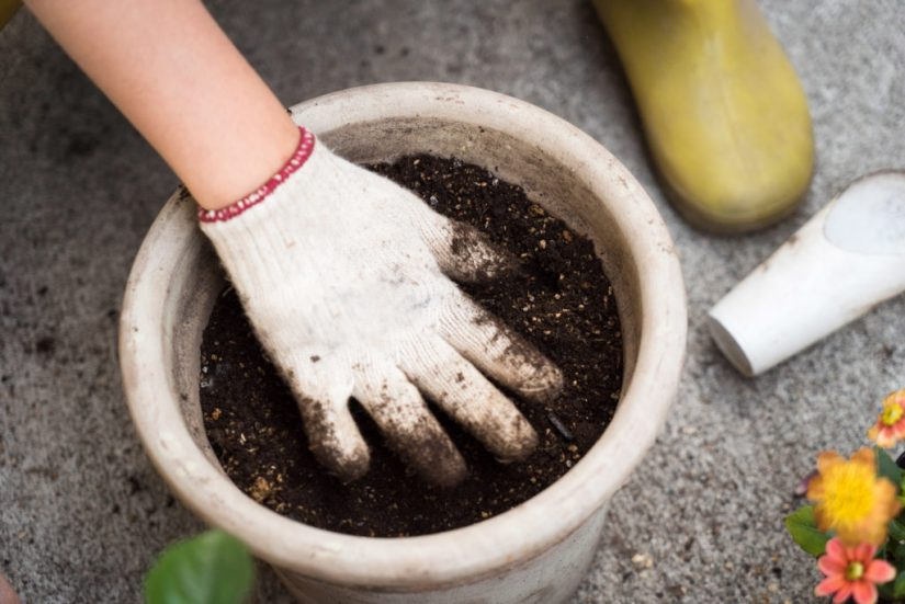 A photograph of a gloved hand feeling the soil in a large white pot. Also visible around the pot are flowers, a yellow rain boot, and the concrete ground.