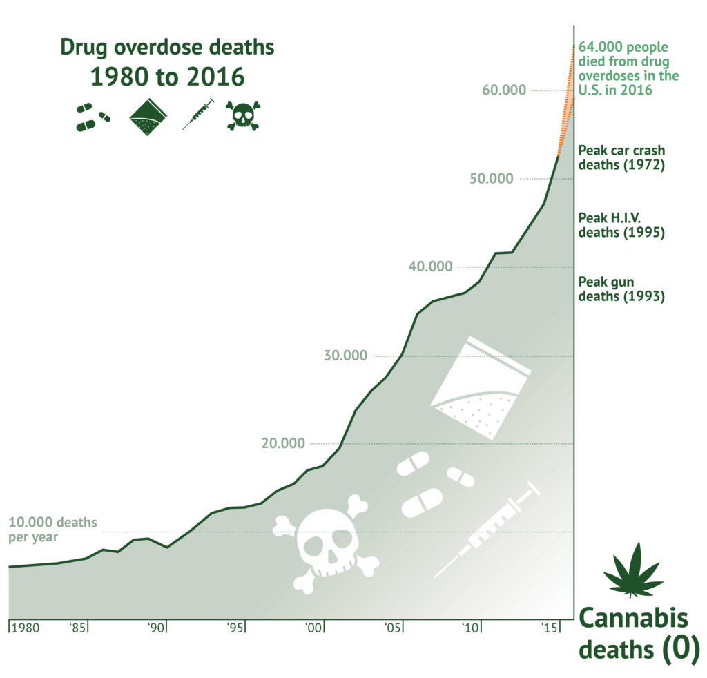 An infographic representing the USA drug overdose deaths from 1980 to 2016. Symbols represent pills, powder, syringes, and skull and crossbones for death. Along a graph we see an exponential increase in 10,000 deaths per year for drug overdoses.