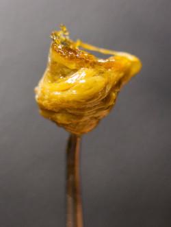 Top 5 benefits of cannabis for epidermolysis bullosa - Sensi Seeds