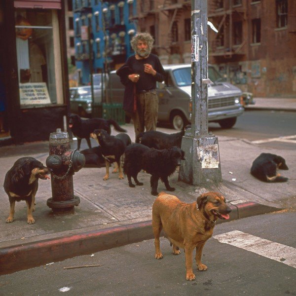 Dogman, E.10th St & Ave. C, 1983. Photograph by Philip Pocock.