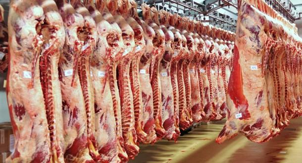 sensyria - ارتفاع أسعار اللحوم الحمراء