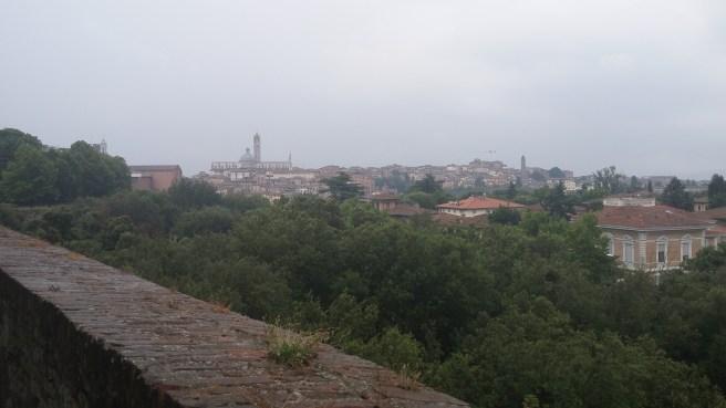 Siena 11 Duomo from Fortezza