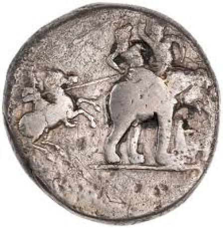 Alexander Elephant