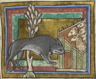 wolfbyz