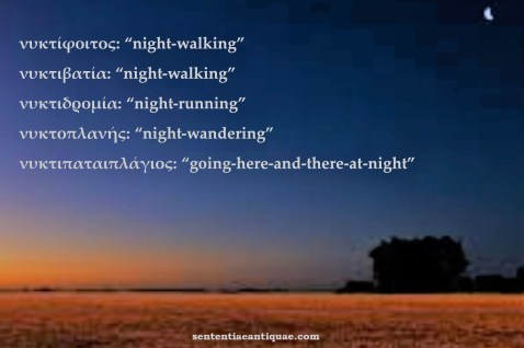 Night words