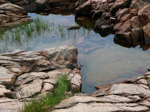 rock pool oracle card meaning