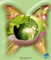 earth wish