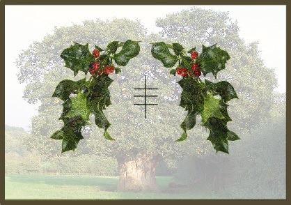 Mistletoe Spiritual Meaning
