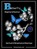 butterfly spiritual meaning