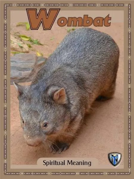 wombat spiritual meaning