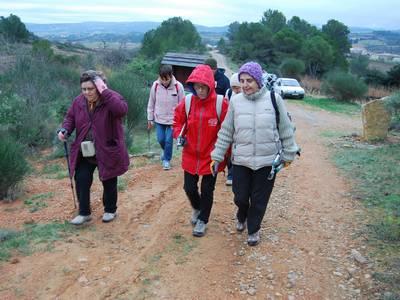 Sentier Francis Lastenouse - Travaux Decembre 2012 (10)