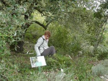 Sentier Francis Lastenouse -Travaux du 30 octobre 2012 (26)