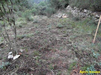 Travaux Novembre - Jardinage Apres - Sentier Francis Lastenouse.jpg
