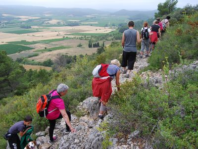 Sentier Francis Lastenouse - Balade Guidée 19 Juillet 2014 12
