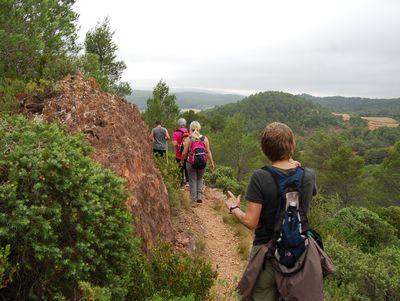 Sentier Francis Lastenouse - Balade Guidée 19 Juillet 2014 21