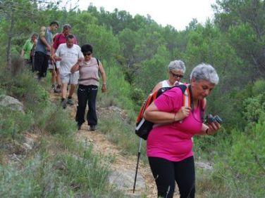 Sentier Francis Lastenouse - Balade Guidée 19 Juillet 2014 46