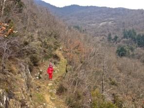 Lungo il sentiero 2