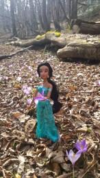 Anche Jasmine passeggia tra i crocus in fiore