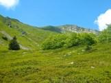 La vallonata e l'Alpe Tre Potenze