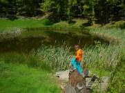 A Lago degli Idoli; in primo piano antichi tronchi di abete trovati nel lago