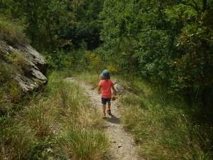 Il facile sentiero per raggiungere il torrente
