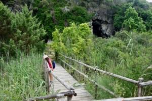 Il Ponte delle Tartarughe