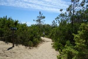 L'accesso alla spiaggia di Collelungo
