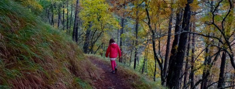 Il rifugio Asqua e il sentiero della Linea Gotica