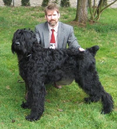 Black Russian Terrier breeder  Pinnacle BRT  Washington