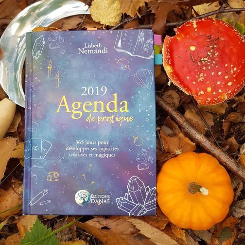 Agenda 2019 de pratique ¤ Lisbeth Nemandi ©Editions Danaé