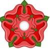rosa bianca,york,guerra delle due rose,riccardo iii, shakespeare, sir walter scott