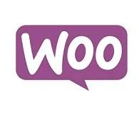Woo Commerce website design solutions