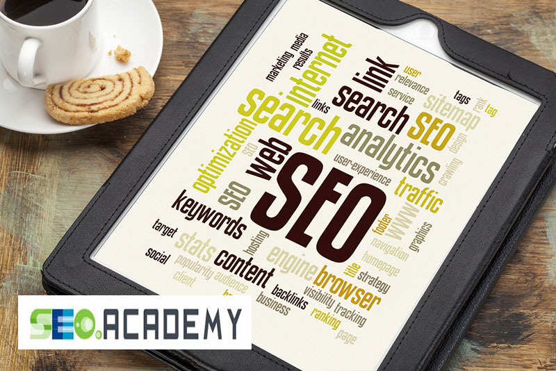 The Knowledge You Need from the SEO Academy
