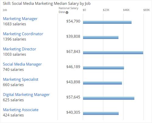 social media salary