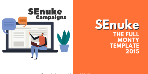 SEnuke - The full monty template 2015 - Campaign