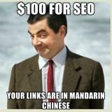 100 dollars for seo meme