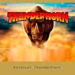 Бонус в Азино 777 на автомате «Thunderhorn»