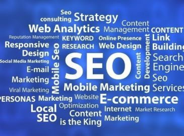 Search Engine Optimization: Seo and Development
