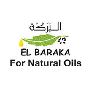 Просування сайту Ель Барака
