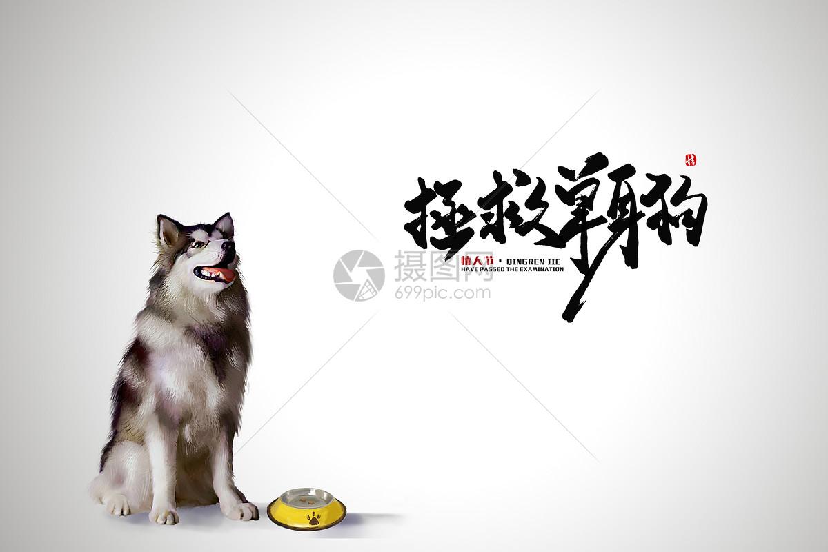 單身狗圖片素材-正版創意圖片400067625-攝圖網