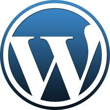 seo optimizacija - WordPress