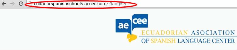 Diferentes URL para distinguir entre los idiomas.
