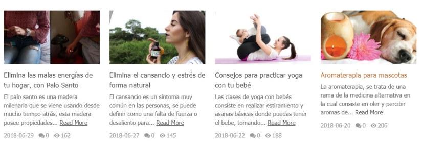 Blog EcuadorainHands en Español.