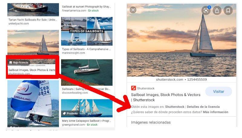 Imagen en Google con información sobre la licencia.