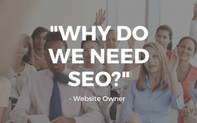 """Why Do We Need SEO?"", Asked a website owner"