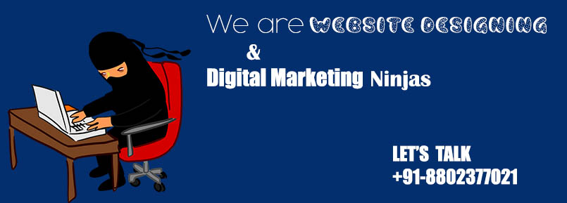 website-designing-marketing-ninjas-delhi-india