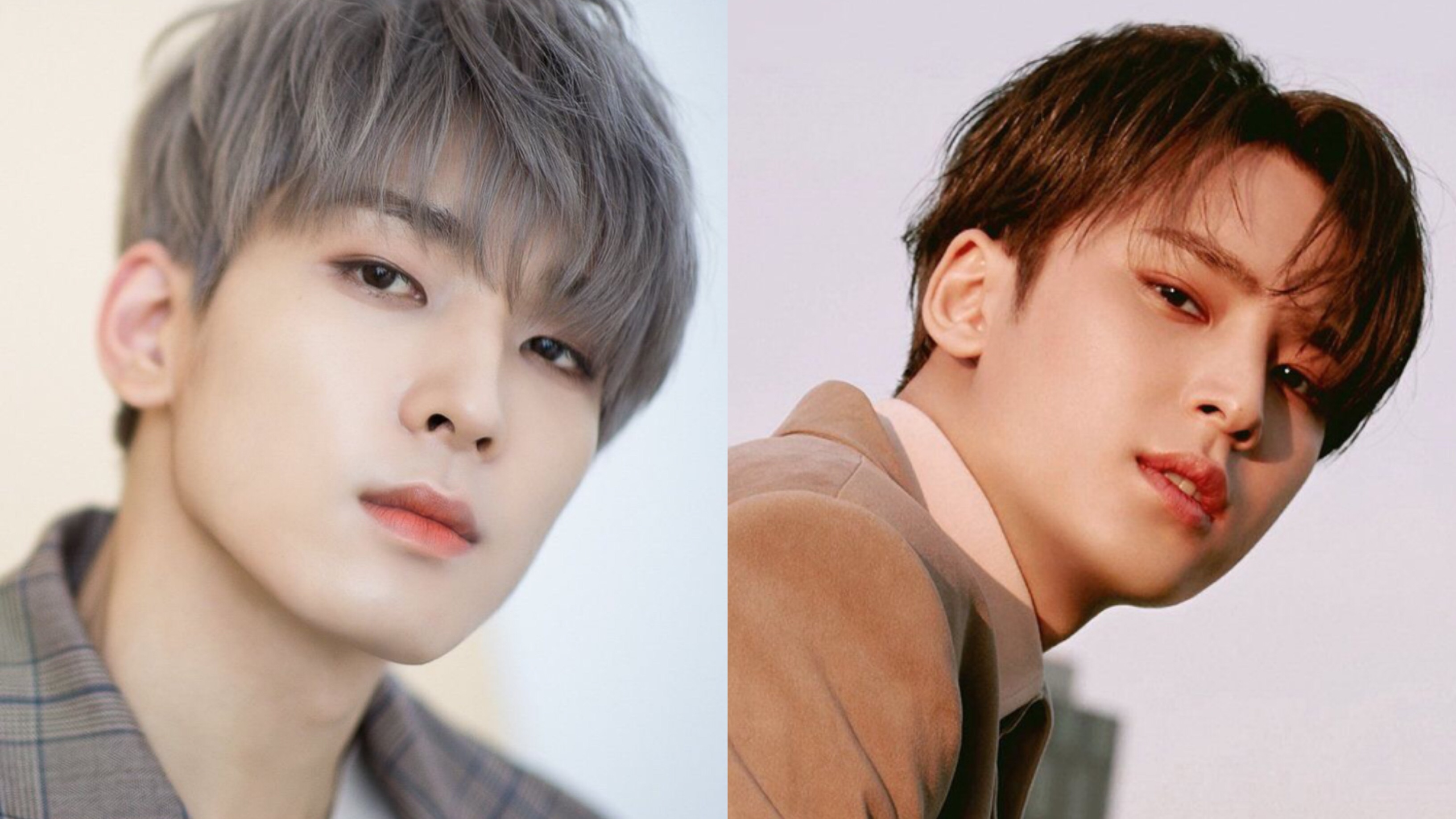 SEVENTEEN's Wonwoo & Mingyu To Release New Single Ft. Lee Hi