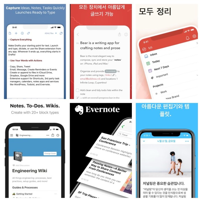 아이폰 앱 : Drafts, Bear, Todoist, Notion, Evernote, Day One